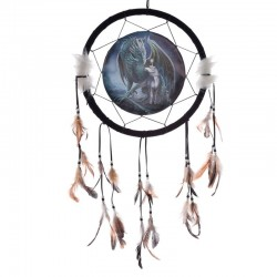 Dreamcatcher Protector Of Magic by Lisa Parker