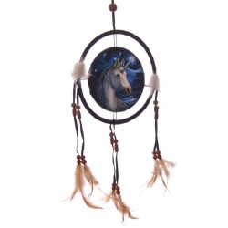 Dreamcatcher Sacred One by Lisa Parker