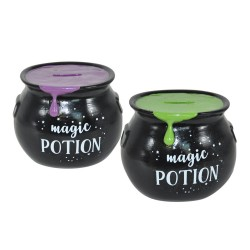 Cauldron Money Box Magic Potion