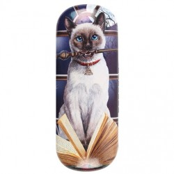 Glasses Case Hocus Pocus by Lisa Parker