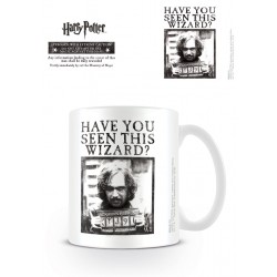 Harry Potter Have You Seen This Wizard Mug