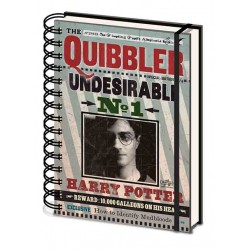 Harry Potter A5 Notebook Quibbler