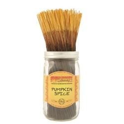 Wildberry Pumpkin Spice Incense Sticks