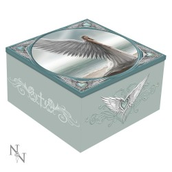 Anne Stokes Mirror Box Spirit Guide