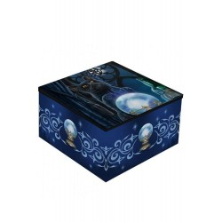 Lisa Parker Mirror Box Witches Apprentice