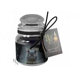Lisa Parker Spell Candle Invoking/Dragons Blood