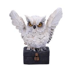 Nemesis Now Owl Archimedes Figurine