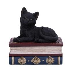 Nemesis Now Cat Box Salems Spells Figurine