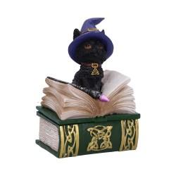 Nemesis Now Cat Box Binx Figurine