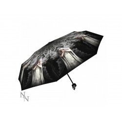 Anne Stokes Umbrella Only Love Remains