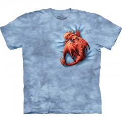 Anne Stokes T-Shirt Dragon Wyrmling