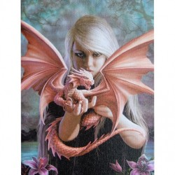 Anne Stokes Small Canvas Print Dragon Kin