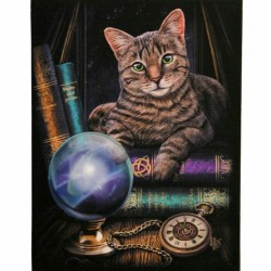 Lisa Parker Small Canvas Print-The Fortune Teller