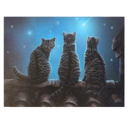 Lisa Parker Small Canvas Print-Wish Upon A Star