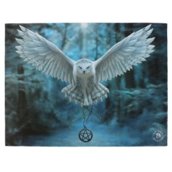 Anne Stokes Small Canvas Print Awaken Your Magic