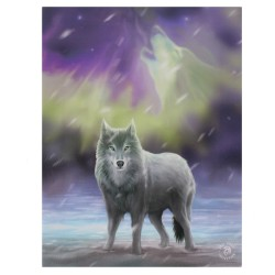 Anne Stokes Small Canvas Print Aurora