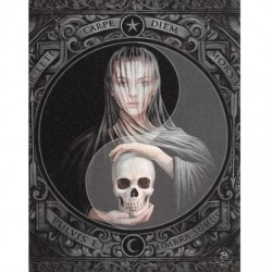 Anne Stokes Small Canvas Print Beyond The Veil