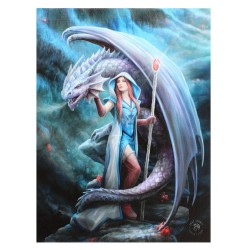 Anne Stokes Small Canvas Print Dragon Mage