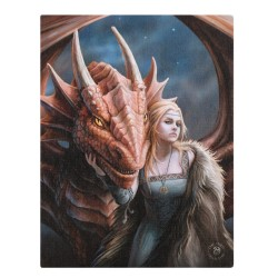 Anne Stokes Small Canvas Print Friend Or Foe