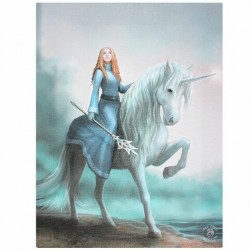 Anne Stokes Small Canvas Print Journey