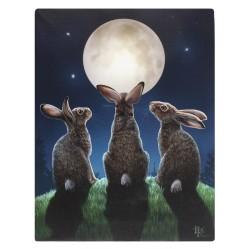 Lisa Parker Small Canvas Print-Moon Shadows