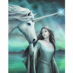 Anne Stokes Small Canvas Print North Star