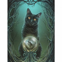 Lisa Parker Small Canvas Print-Rise Of The Witches