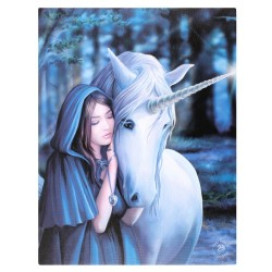 Anne Stokes Small Canvas Print Solace