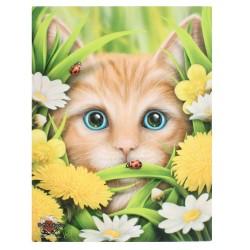 Cat Small Canvas Print-Summer Cat