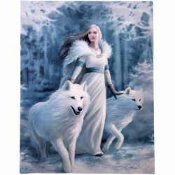 Anne Stokes Small Canvas Print Winter Guardians