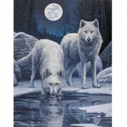Lisa Parker Small Canvas Print Warriors Of Winter