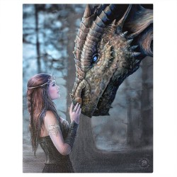 Anne Stokes Small Canvas Print Once Upon A Time