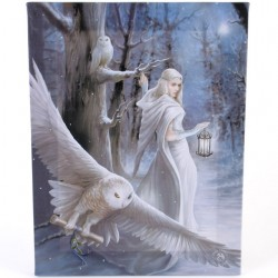 Anne Stokes Small Canvas Print Midnight Messenger